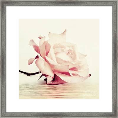 Lucid Framed Print