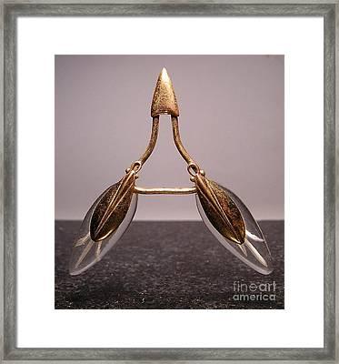 Lucite 4 Framed Print by Dwight Goss