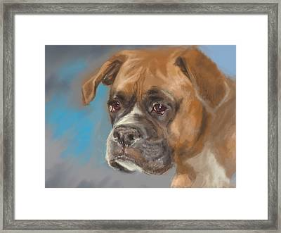 Lucky  Framed Print by Anastasia Michaels