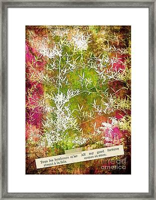 Lucky Bamboo Framed Print by Judi Bagwell