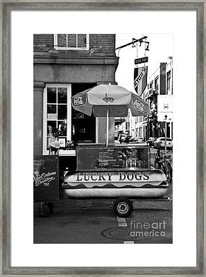 Lucky Dogs Framed Print by Leslie Leda