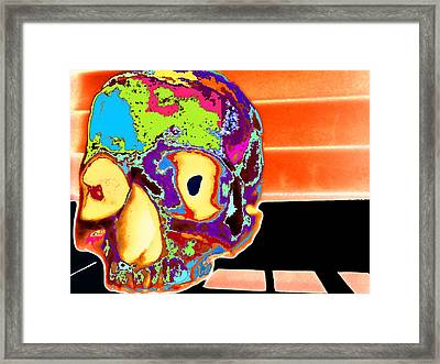 Lucy Framed Print by Rdr Creative