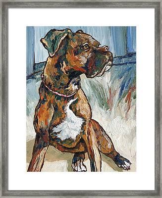 Lulu Framed Print by Sandy Tracey