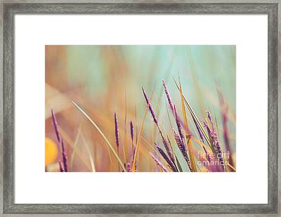 Luminis - S07b Framed Print by Variance Collections