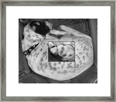 Luna Big And Small Framed Print by Juliana  Blessington