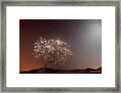 Lunar Almendro Framed Print by Jol
