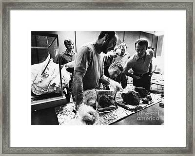 Lunar Rock Specimens From Apollo 14 Framed Print by Omikron