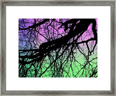 Framed Print featuring the photograph Lunar Silhouette by Amy Sorrell