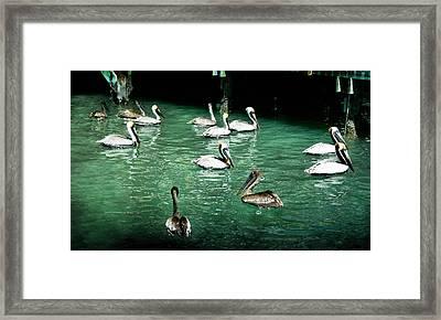 Lunch Crowd Framed Print by Ellen Heaverlo