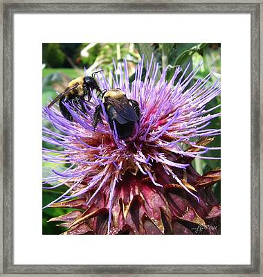 Framed Print featuring the photograph Lunch For Two by Maciek Froncisz