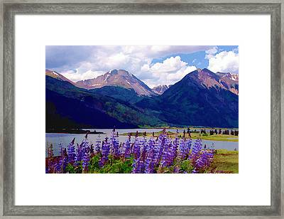 Lupine Lake Framed Print