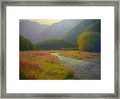 Lupins Cascade Creek Framed Print
