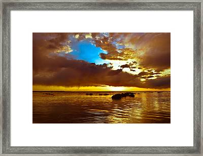 Lustre Framed Print by Jason Naudi Photography
