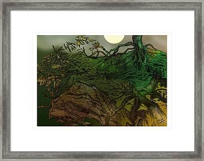 Lymphoy Night Drawing Framed Print