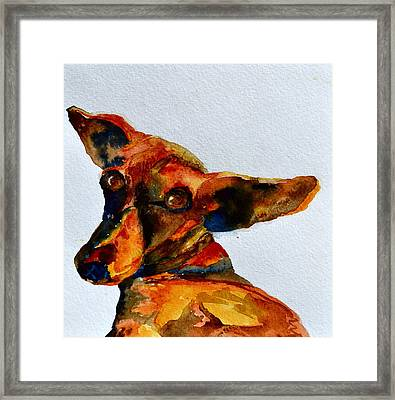 Macey Framed Print by Beverley Harper Tinsley