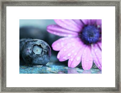 Macro Shot Of A Blueberry Framed Print by Sandra Cunningham