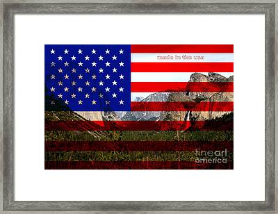 Made In The Usa . Yosemite Framed Print