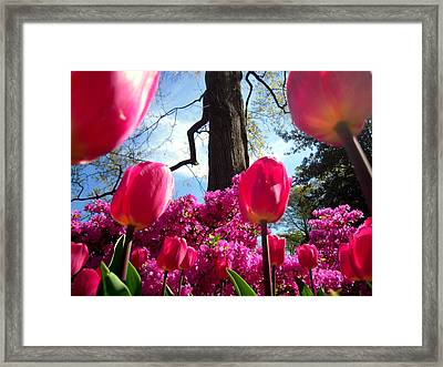 Maestro Tree Conducts The Flower Orchestra Framed Print
