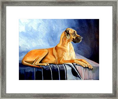 Magesty Great Dane Framed Print by Lyn Cook