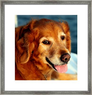 Maggies Smile Framed Print
