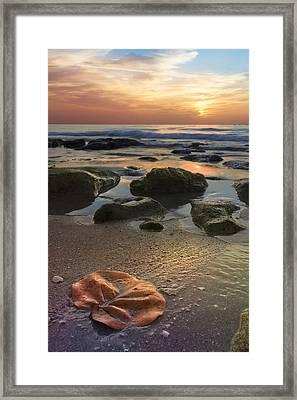Magic Every Moment Framed Print by Debra and Dave Vanderlaan