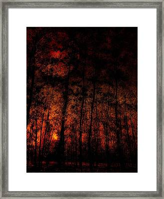 Magic Forest Autum - Herbst Im Zauberwald Framed Print by Mimulux patricia no No