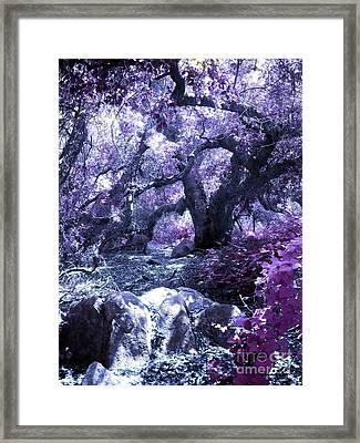 Magic Forest Framed Print by Robert Ball