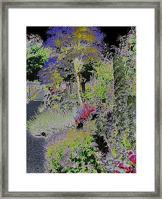 Magic Garden Framed Print by Fred Whalley