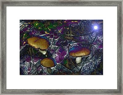 Magic Mushrooms Framed Print by Barbara S Nickerson