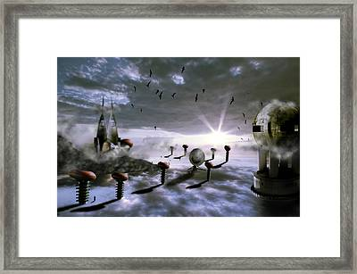 Magic Shrooms Framed Print by Nathan Wright