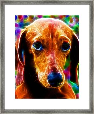 Magical Dachshund Framed Print by Paul Van Scott