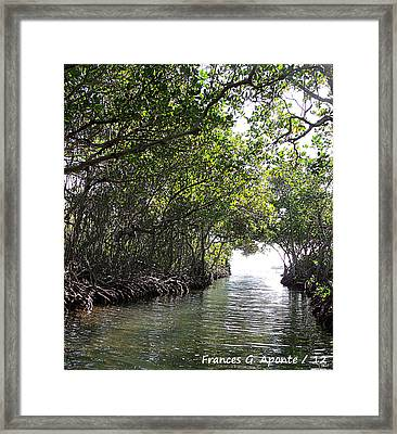 Magical Green Framed Print by Frances G Aponte