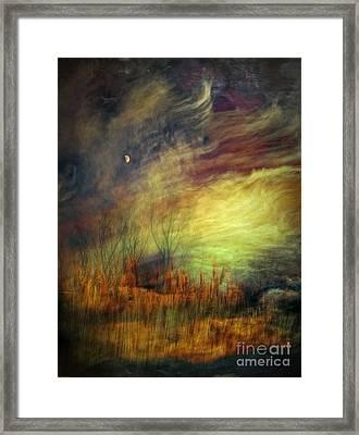 Magical Woods Framed Print by Emilio Lovisa