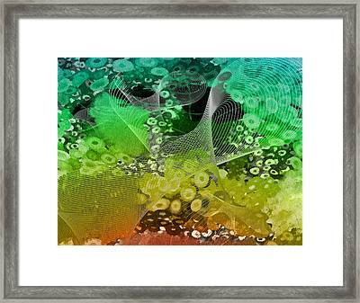 Magnification 3 Framed Print