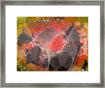 Magnification 4 Framed Print
