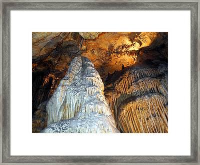 Magnificence Framed Print by Lynda Lehmann