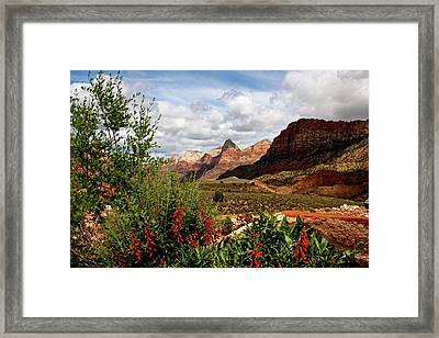 Magnificent Vistas In Zion Framed Print
