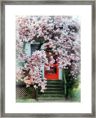 Magnolia By Red Door Framed Print