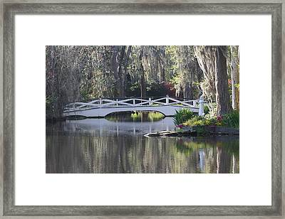 Magnolia Gardens Framed Print