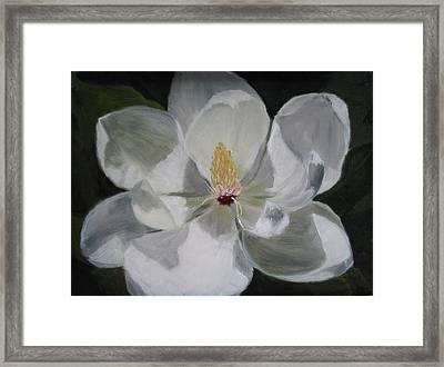 Magnolia Framed Print by Iris Nazario Dziadul
