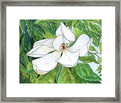 Magnolia Framed Print by Linda Battles