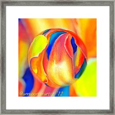 Magnolia Marble Framed Print