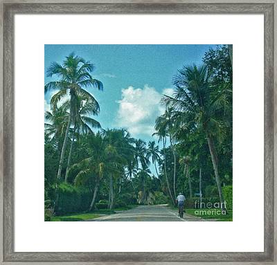 Mail Delivery In Paradise Framed Print