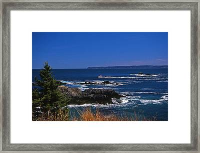 Maine At West Quoddy Framed Print by Skip Willits