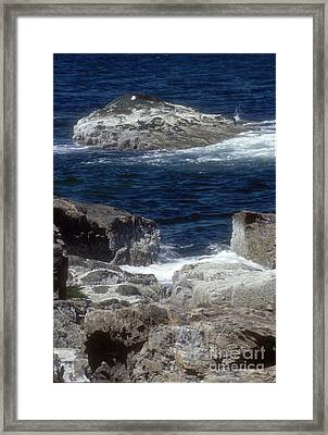 Maine Coast Surf Framed Print by Darleen Stry