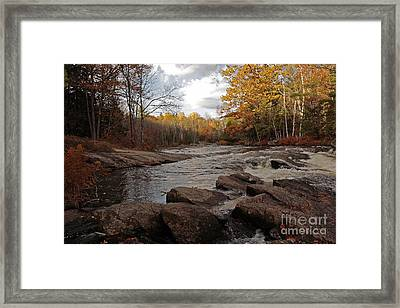 Majestic Autumn Moments At Algonquin Proncial Park Framed Print by Inspired Nature Photography Fine Art Photography