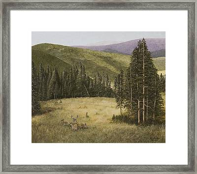 Majesty In The Rockies Framed Print