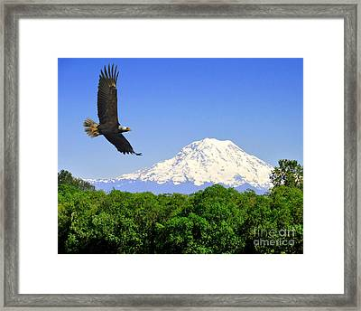 Majesty Framed Print by Jack Moskovita
