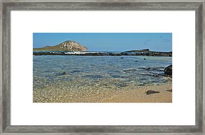 Makapuu Beach 0045 Framed Print by Michael Peychich