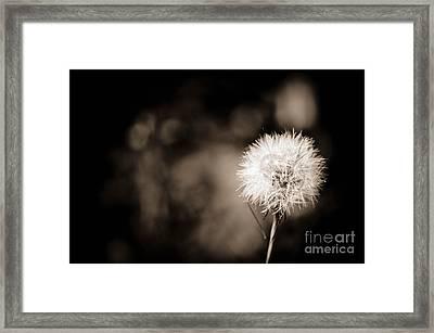 Make A Wish Framed Print by Gwen McFadden